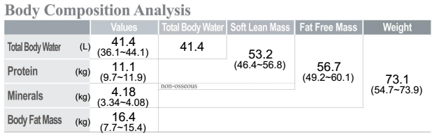 Adelaide body fat measurement